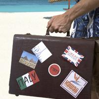 Distribución de cursos de Gestion empresas servicios turisticos