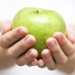Distribución de cursos de Nutricion y Dietetica